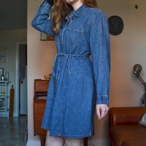 The Snap Button Denim Dress